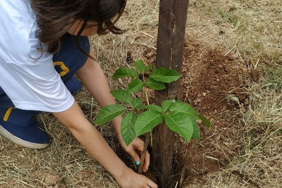 754d93f32d We plant trees for a better world. Help us children to save our ...